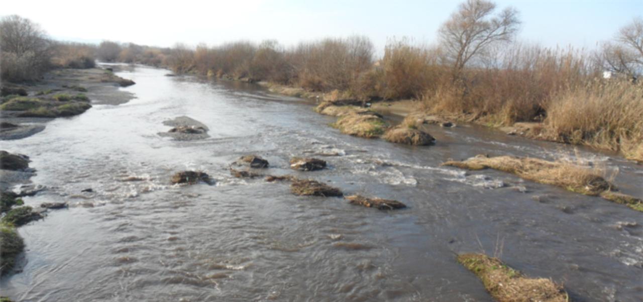 Gediz Nehri'nde Kirlilik